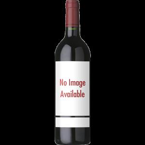 enoteca-san-guido-bolgheri-vino